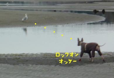 またビッショリ1.JPG
