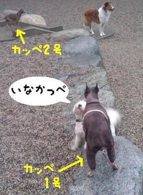 ゆる〜2.JPG