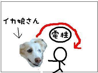 某犬.JPG