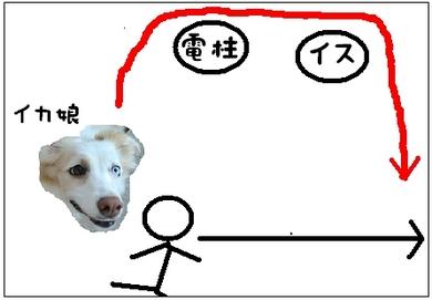 某犬3.JPG