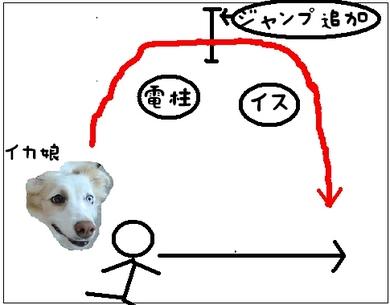 某犬4.JPG
