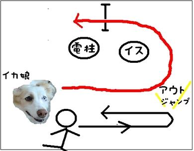 某犬5.JPG