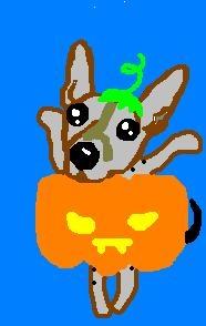 Halloween2012-1.JPG