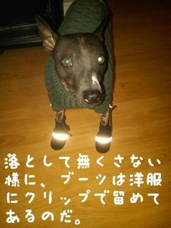犬ブーツ.JPG